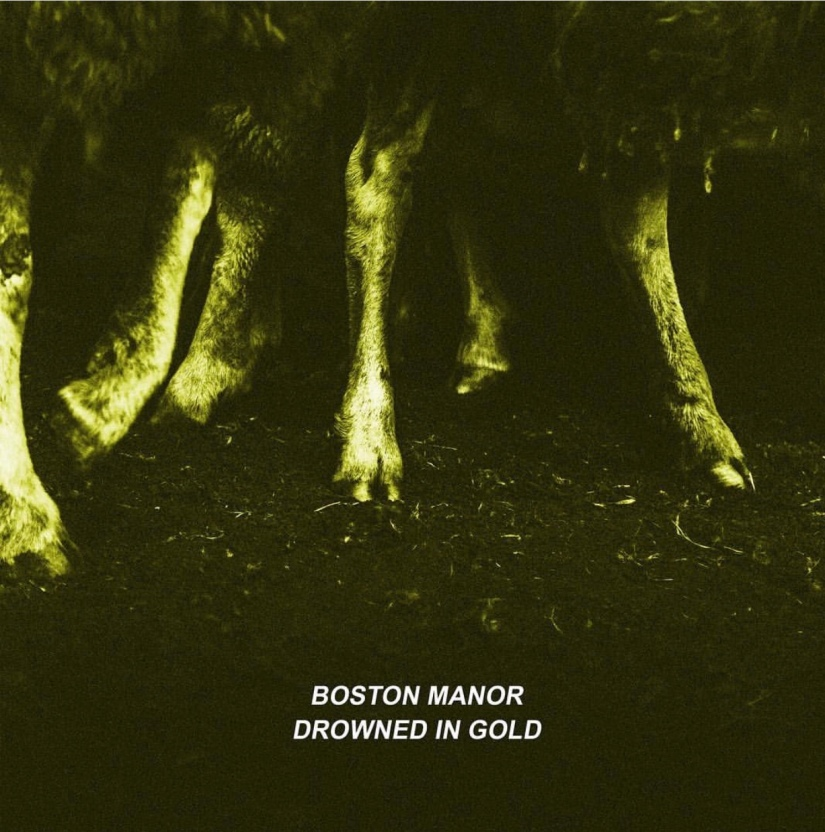 Boston Manor Drop New Video For 'Drowned InGold'